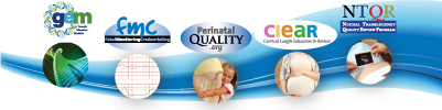 Perinatal Quality Foundation Projects